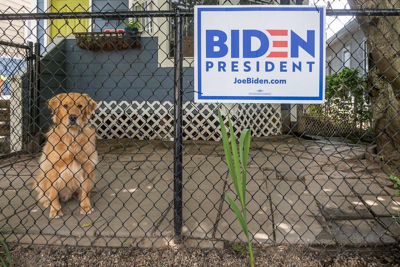 """Biden ist kein Roosevelt – er verschlimmert die """"amerikanische Krankheit"""""""